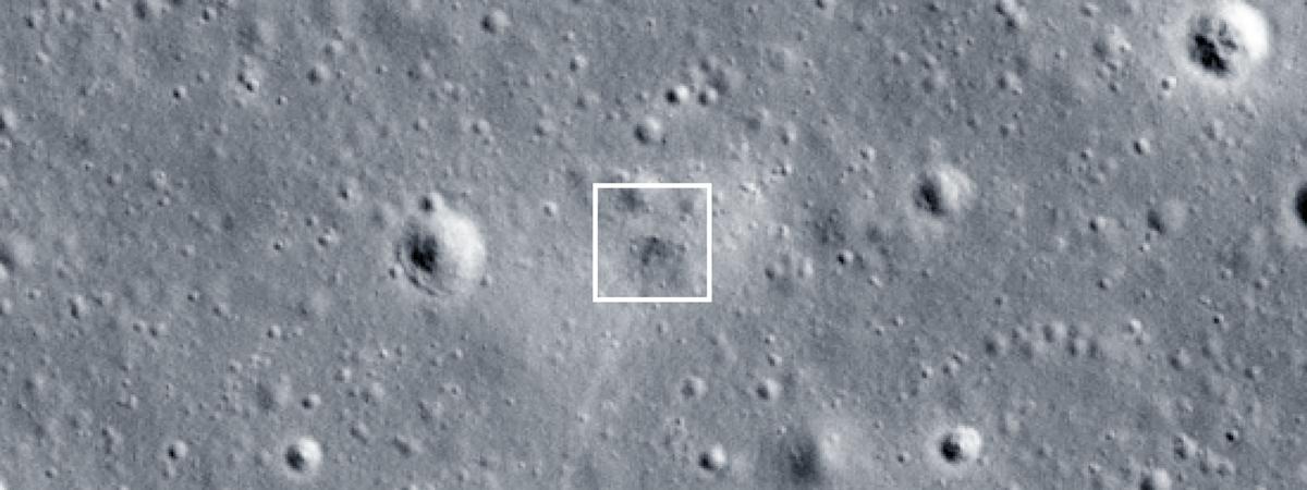 Osos espaciales / Tardígrados en la Luna